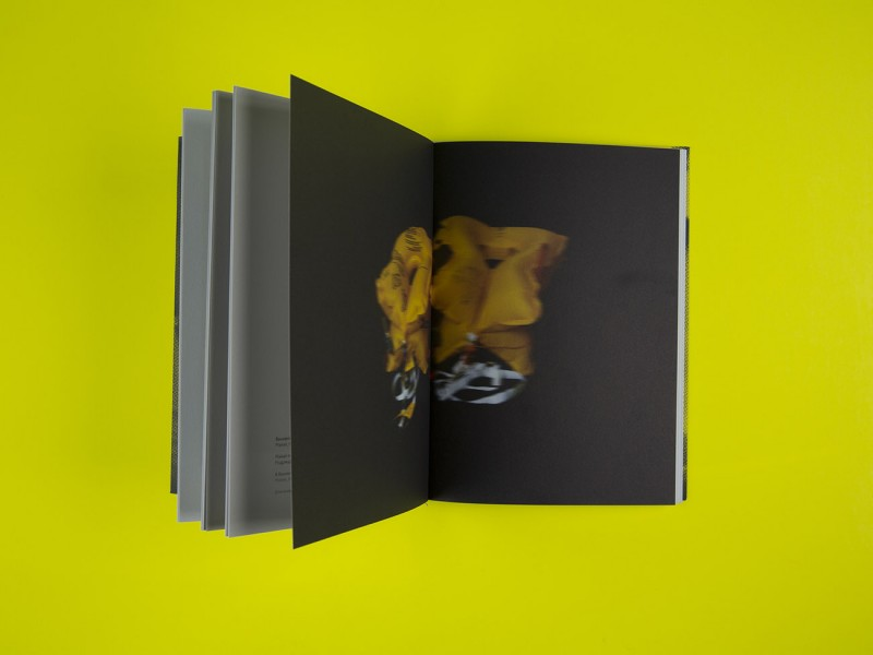 Layout einer Fotografie für den Ausstellungskatalog für den Salzburger Kunstverein